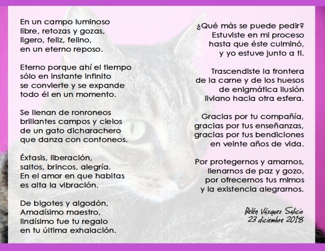 Poesia homenaje a Capi